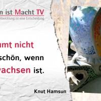 Knut Hamsun, Man träumt nicht mehr so schön, wenn man erwachsen ist.