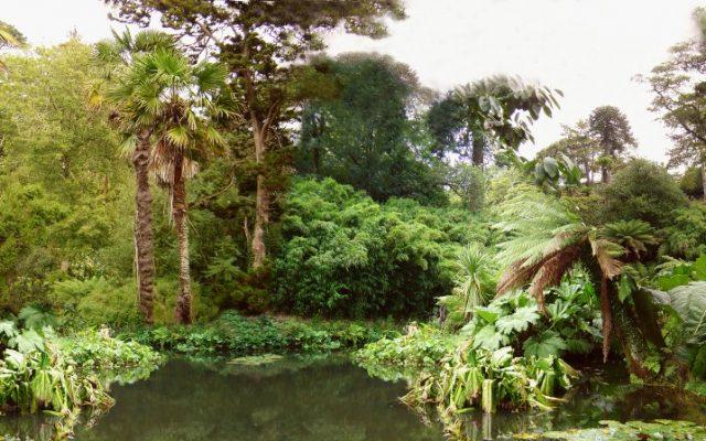 Die Selbstachtung in Zeiten des Dschungelcamps