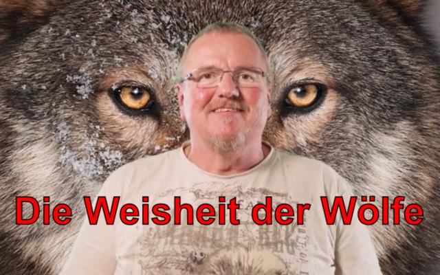 Die Weisheit der Wölfe - Interview mit Elli Radinger